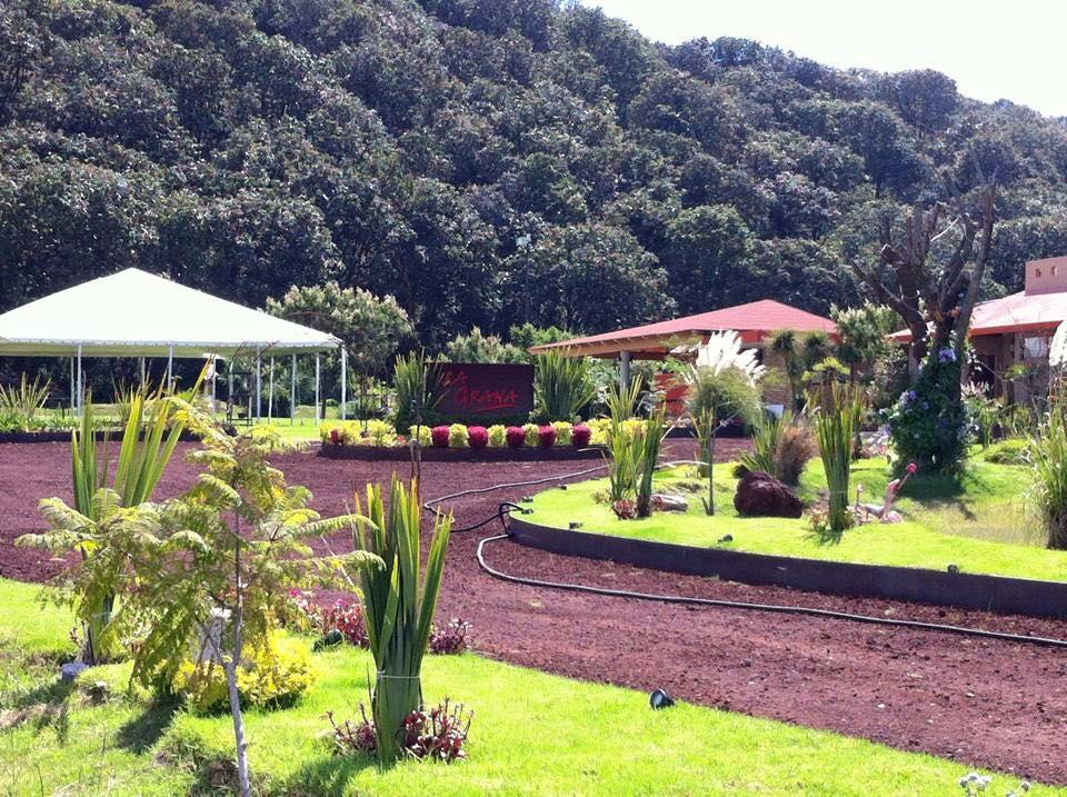Terraza Jardin Eventos Guadalajara